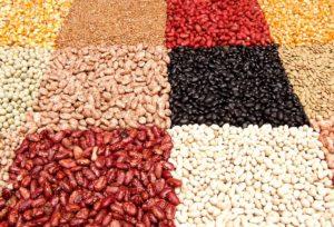 Dieta de cereales y legumbres